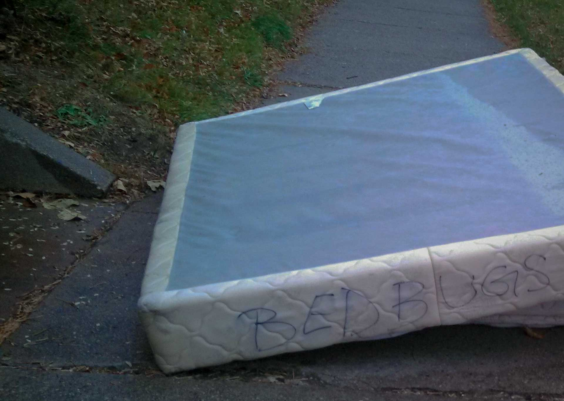 A Box Spring discarded by the curtsied